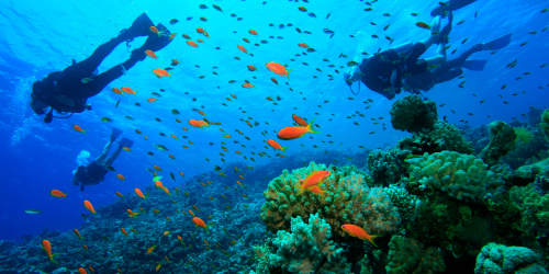 images/scuba-diving-home.jpg