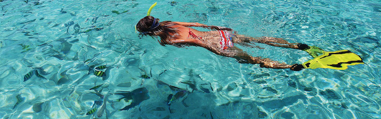 Snorkeling Fishes