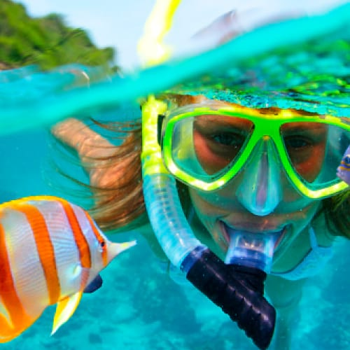 https://happyshuttlecancun.com/images/snorkeling-tour-home.jpg
