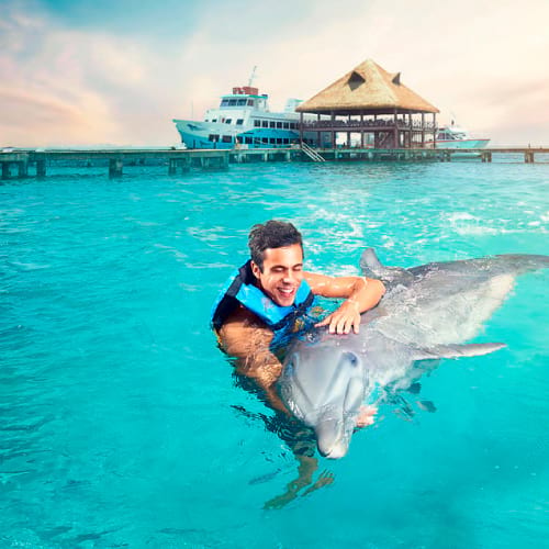 https://happyshuttlecancun.com/images/swim-with-dolphins-home.jpg