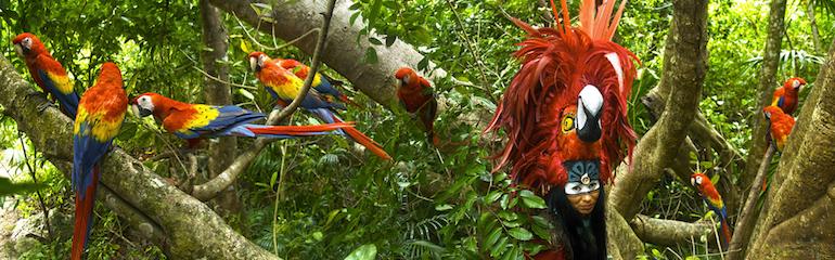 Birds in Xcaret