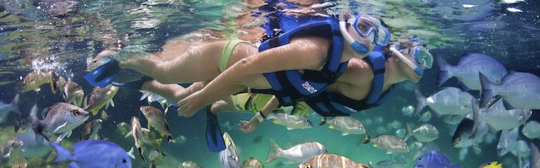 Snorkeling in Xel-Ha